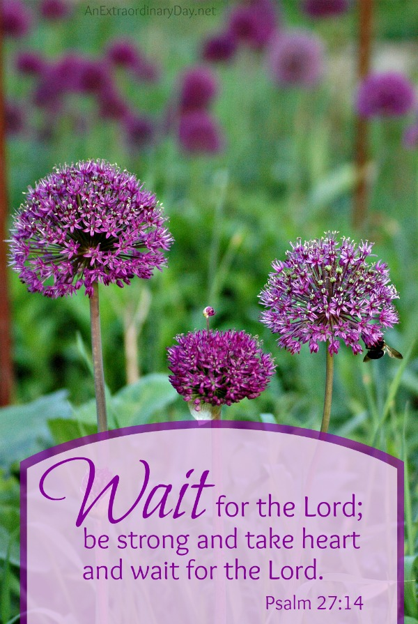Wait-for-the-Lord-Joy-Day-AnExtraordinaryDay.net_